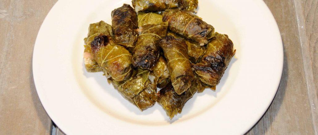 Ντολμαδάκια γιαλαντζί - Dwarf Bark Beetles