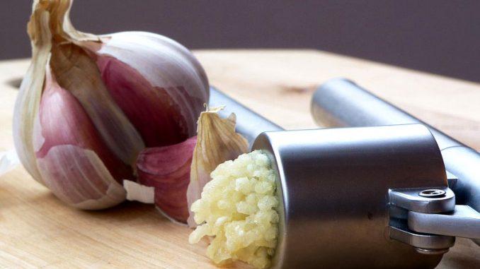 Σκόρδο - garlic-liliacea