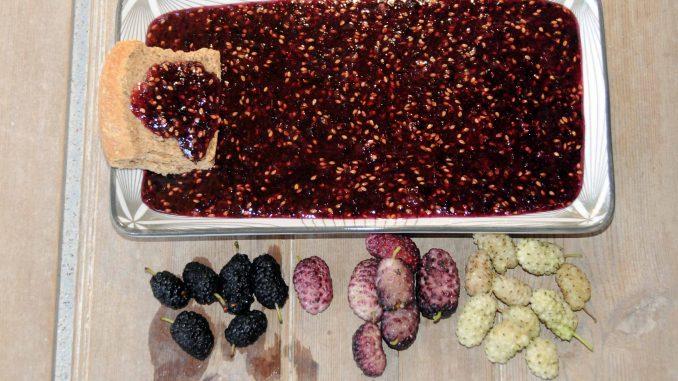 Μαρμελάδα με άσπρο, μαύρο και δίχρωμο μούρο - Jam with white, black and two-colored berry