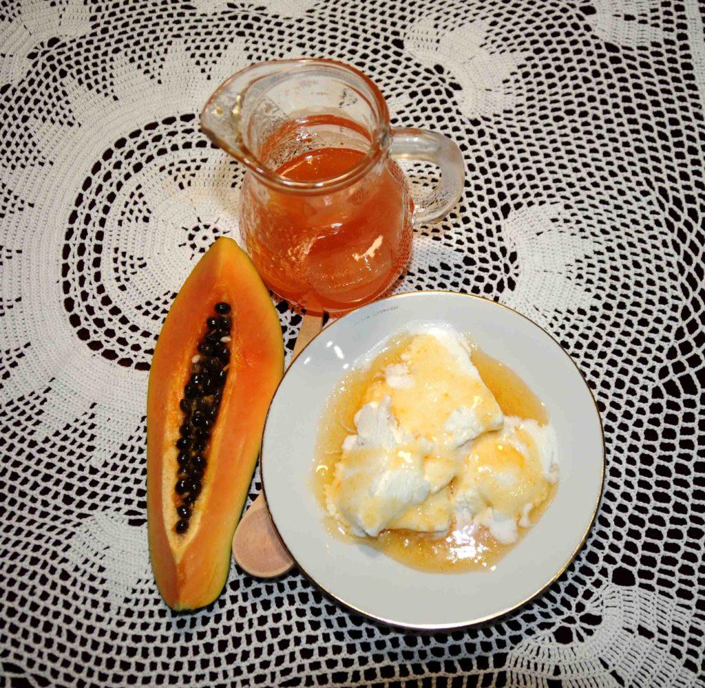 Σιρόπι παπάγιας - Papaya syrup