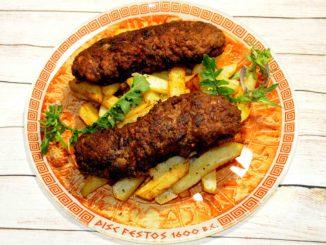 Μερίδα κεμπάπ με πατάτες τηγανητές - A portion of kebab with french fries